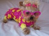 Feeling Just Ducky Dog Pet Pajamas ducks pink yellow  Sizes Medium - Large