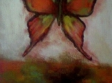 Red Butterfly - AGS 017