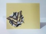 White w/Black Felt Flower & Butterfly Note Card Keepsake