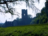 Ruins of Fountain's Abbey in UK, Photo Print 8' x 6'