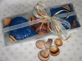 Handmade Soap Shells &Natural Sea Shells in a Minimal Style Gift