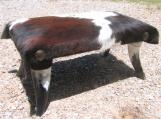 Rustic LARGE Cowhide Horn Leg Footstool Western Steer Stool 0152