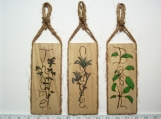 Herb Wall Plaques -NO/DB  Set of 3