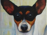 Original 6 x 6 Custom Portrait of Your Dog, Cat or Exotic Pet