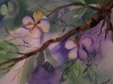 Spring Blooms III Original Watercolor 8 x 10 by BDorsa (with 11 x 14 mat)