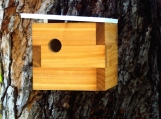 MId Century Modern Case Study Birdhouse by Nathan Danials