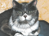 "Custom Painted Dog & Cat Portraits - 5"" x 5"""
