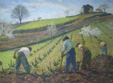 Cultivation Of The Vines Cross Stitch Pattern