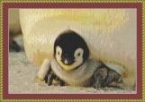 Baby Emperor Penguin Cross Stitch Pattern