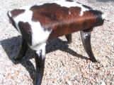 Western Cowhide Horn leg footstool Made In USA 0174