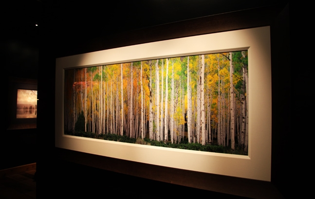 Art Gallery featuring work of Rodney Lough Jr.
